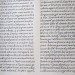 Cartulari de Sant Cugat · Detalle